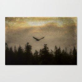 eagle soaring Canvas Print
