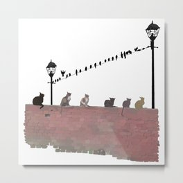 Cats and Birds Metal Print