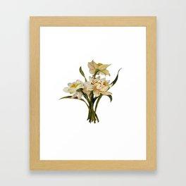 Double Narcissi Spring Flower Bouquet Framed Art Print
