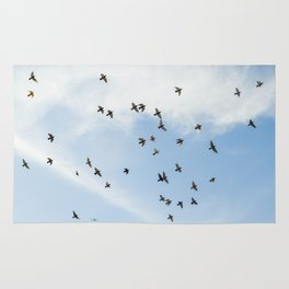 Pigeons in the sky Rug