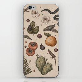 Florida Nature Walks iPhone Skin