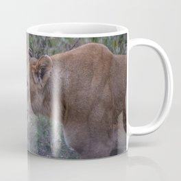 Prowling Lioness Coffee Mug