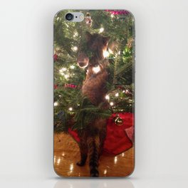 Curiousity Killed The Cat iPhone Skin