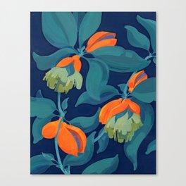 Tropical orange fruit tree Canvas Print