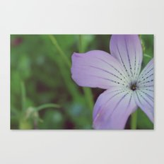 Muted Color Canvas Print