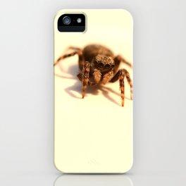 Incy Wincy iPhone Case