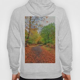 Autumn Dream Hoody