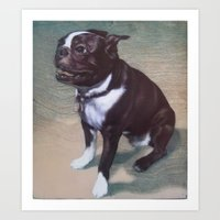 boston terrier Art Prints featuring Boston Terrier by RSassi