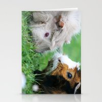 pigs Stationery Cards featuring guinea pigs by Christine baessler