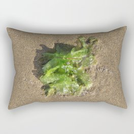 Barwon Heads Print   Bellarine Peninsula   Bright Green Seaweed on the Sand Rectangular Pillow