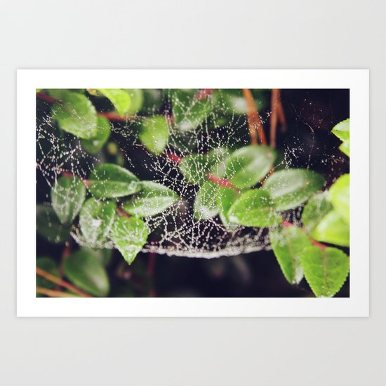 The Spider's Web Art Print