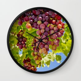 ripening grapes on the vine Wall Clock