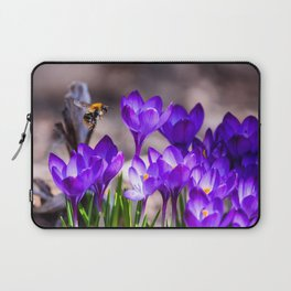 Flying bee over purple crocuses at flower bed in garden. Spring time. Laptop Sleeve