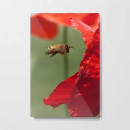 The Levitating Bee Metal Print