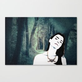 Witch In the Woods Canvas Print