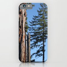 The Old Guard Slim Case iPhone 6s