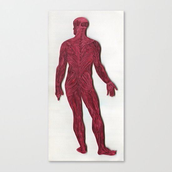 Full Figure Muscle Structure Canvas Print