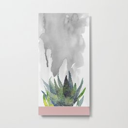 Succulent by the window Metal Print