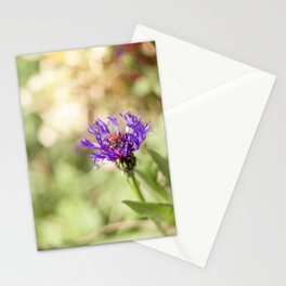 Flower Study No.2 Stationery Cards
