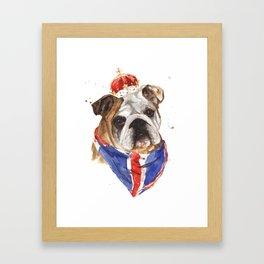 British Bulldog Framed Art Print