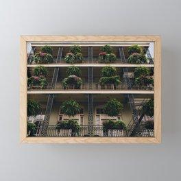 Iron & Ferns Framed Mini Art Print