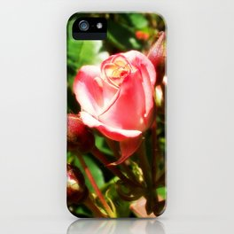 Natural Beauty • Point Defiance Rose Gardens • Tacoma, WA iPhone Case