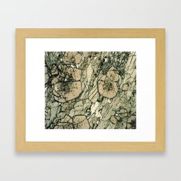 Garnet Crystals Framed Art Print