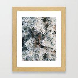 Cactus in Joshua Tree Framed Art Print