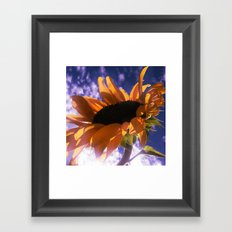 FLOWER 039 Framed Art Print