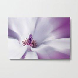 Magnolia macro 059 Metal Print