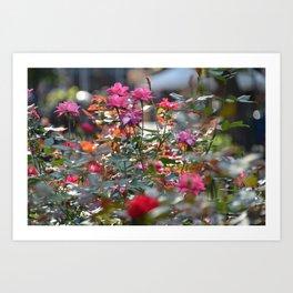 Pink & Red Art Print
