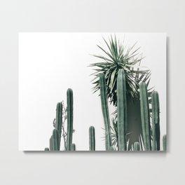 Desert Botanicals Metal Print