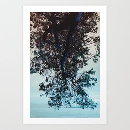 Blue Overhang (Vertical) Art Print