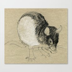 Rat 2 Canvas Print
