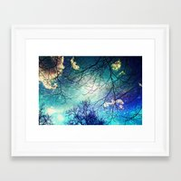 night sky Framed Art Prints featuring night sky by Sylvia Cook Photography