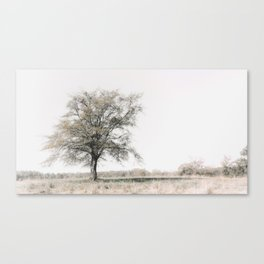 Lonely Tree #minimalism Canvas Print