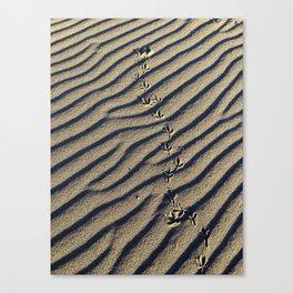 Beach Take Off Canvas Print
