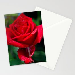 Olympiad Rose-1 Stationery Cards