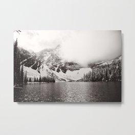 Wild Winter (B&W) Metal Print