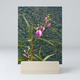 Wild Orchid Buds Mini Art Print