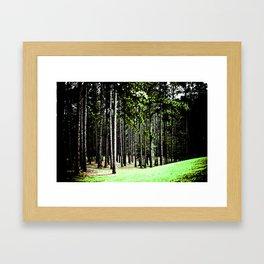Eye on Nature · Trees Framed Art Print
