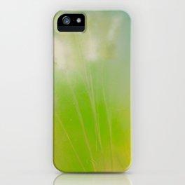 Summer Dreams  iPhone Case
