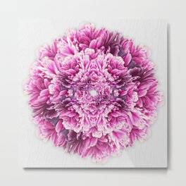 the pinkest  Metal Print
