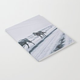 Winter Horses Notebook
