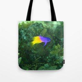 Gradient fish (orange to purple) Tote Bag