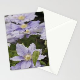 Longwood Gardens - Spring Series 157 Stationery Cards