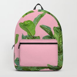 Rubber trees in group with pink Backpack