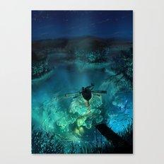 The Universe Below Canvas Print
