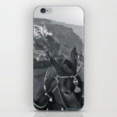 Greece iPhone & iPod Skin