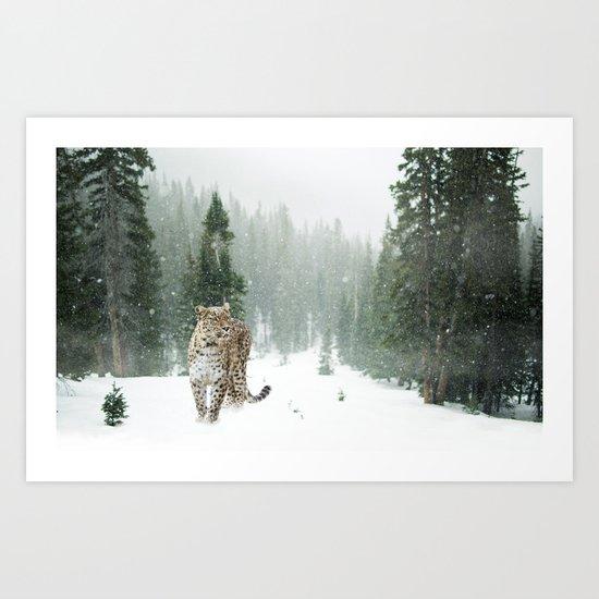 Leopard persian Art Print